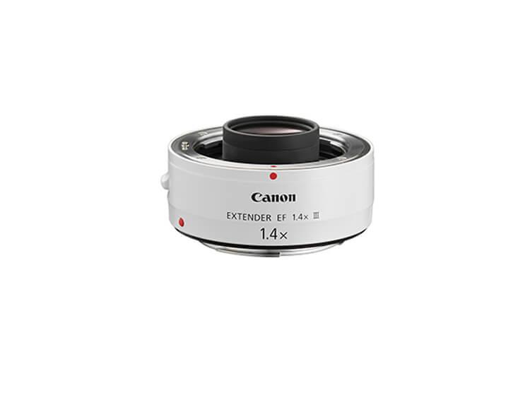 Supertelefoto - Extender EF 1.4x III