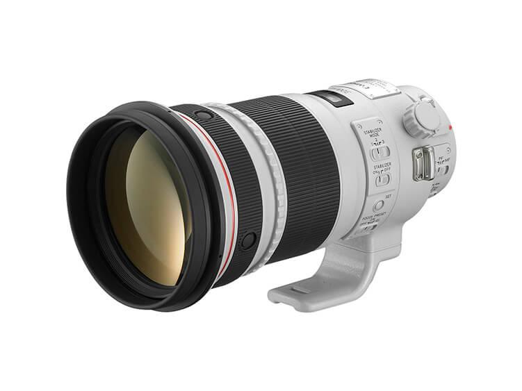 Telefoto - EF 300mm f/2.8L IS USM